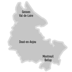canton Doué-la-Fontaine - Détail découpage du canton
